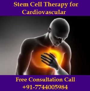 Stem Cell Therapy for Cardiovascular.jpg