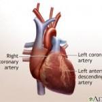 Minimally Invasive Heart Surgery-2.jpg