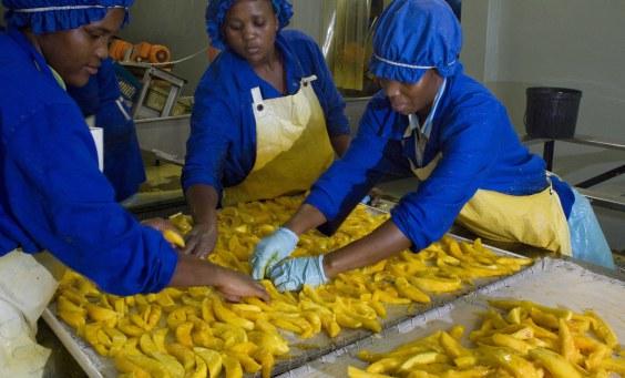 5 Profitable Africa Business Ideas For The Diaspora