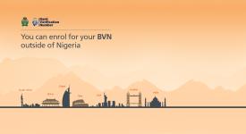 bvn_diaspora-website-copy